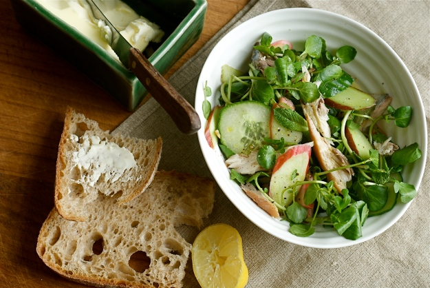 rhubarb and mackerel salad