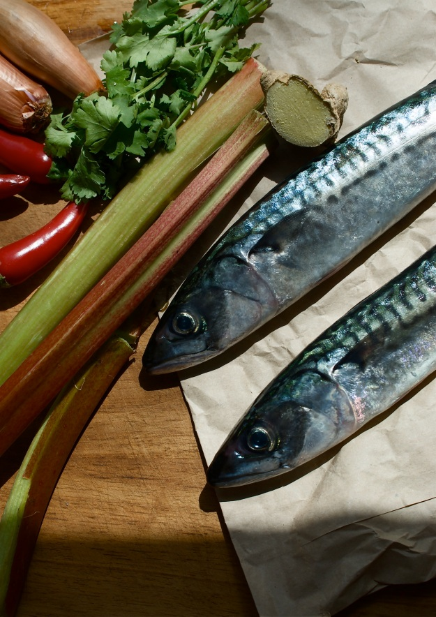 spiced rhubarb and grilled mackerel