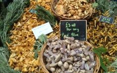 Mushrooms at Borough