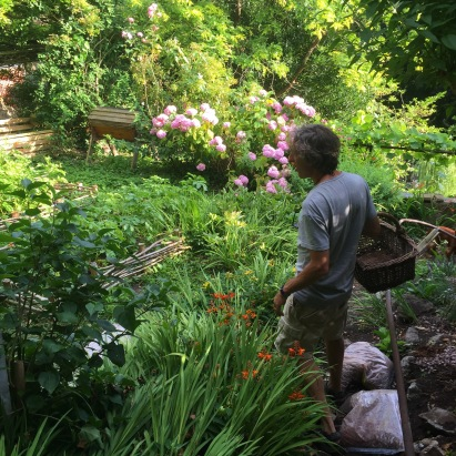 Gathering supper - Jenny Chandler Blog