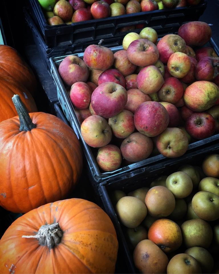 Jenny Chandler Blog Pumpkins